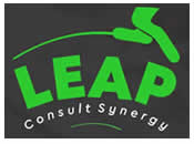 LEAP Consult Synergy